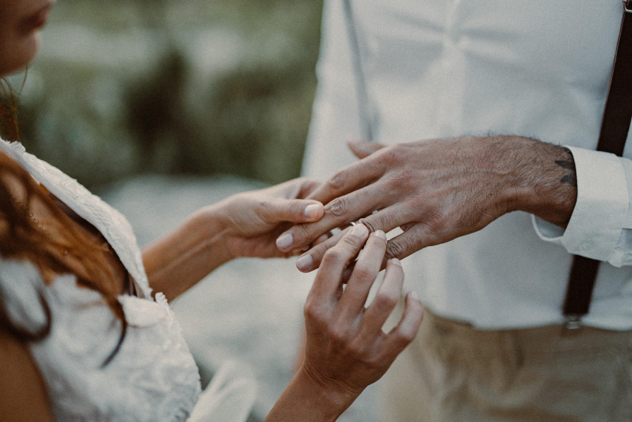 albedo realizzazione partecipazione di matrimonio terra
